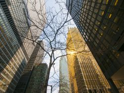 Buildings in financial district in downtown Toronto, Canada
