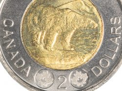 Canada's two dollar coin is bimetallic, and shows a polar bear, a symbol of concern for the endangered environment.