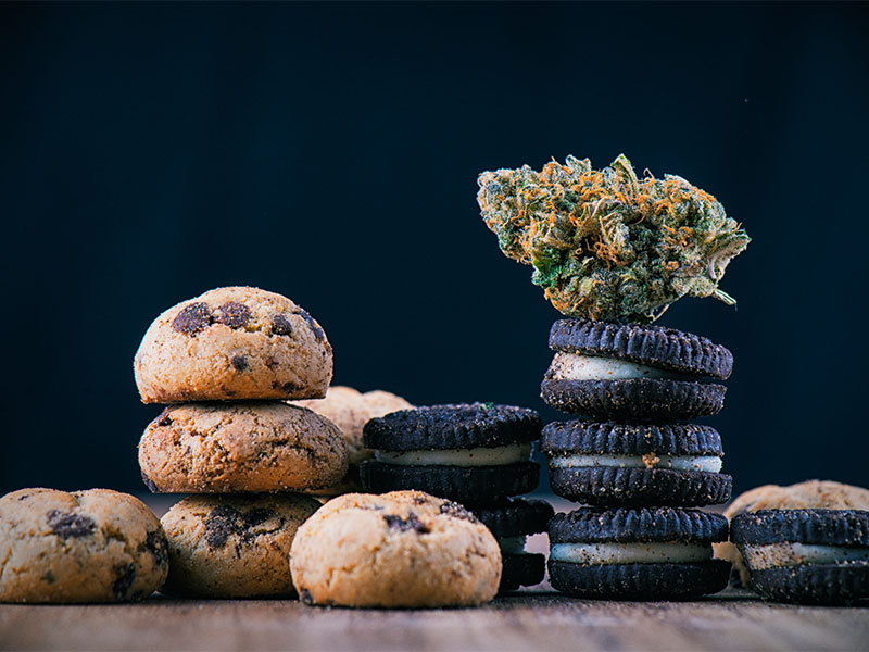 Detail of single cannabis nug over infused chocolate chips cookies - medical marijuana edibles