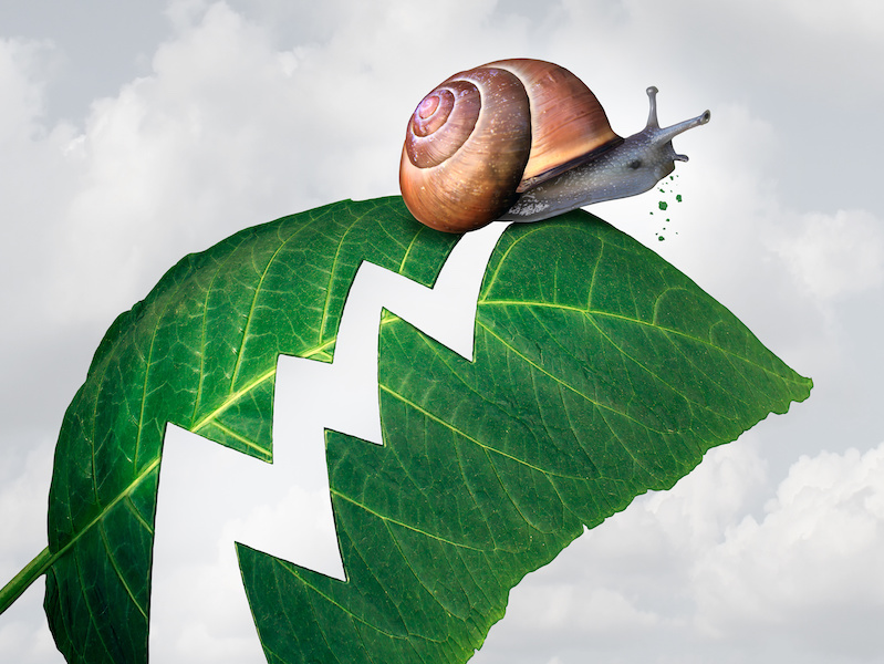 Slow profit growth business concept as a snail creating a hole shaped as a financial arrow chart in a leaf by eating the plant as a metaphor for economic slowdown.