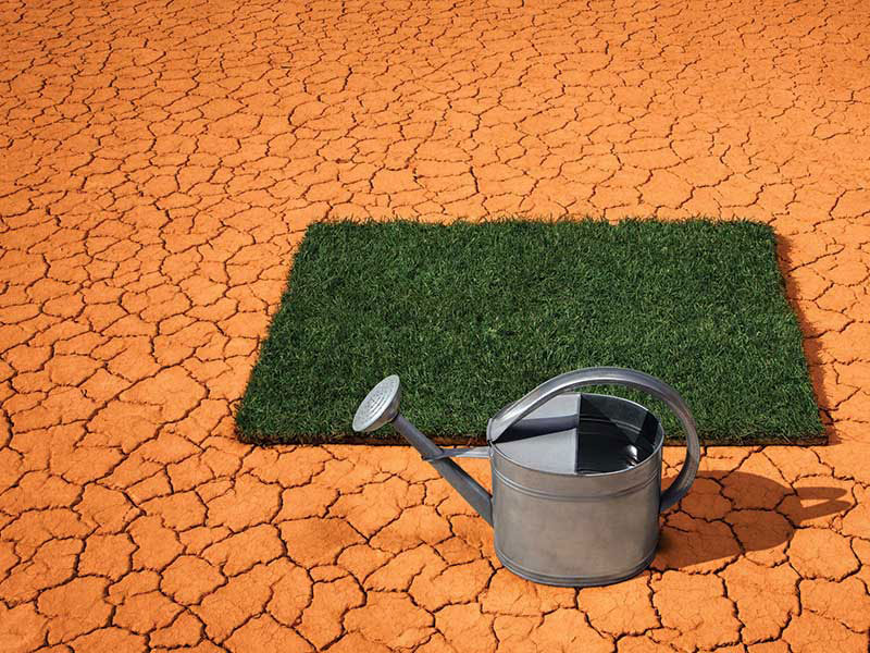 dry environment